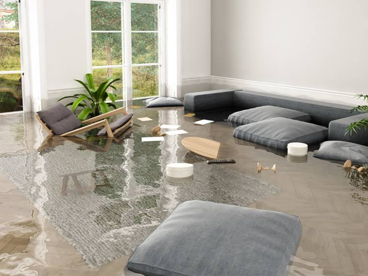 Water Damage Services Florence SC